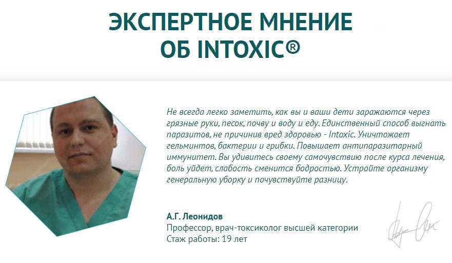 Интоксик – экспертное мнение