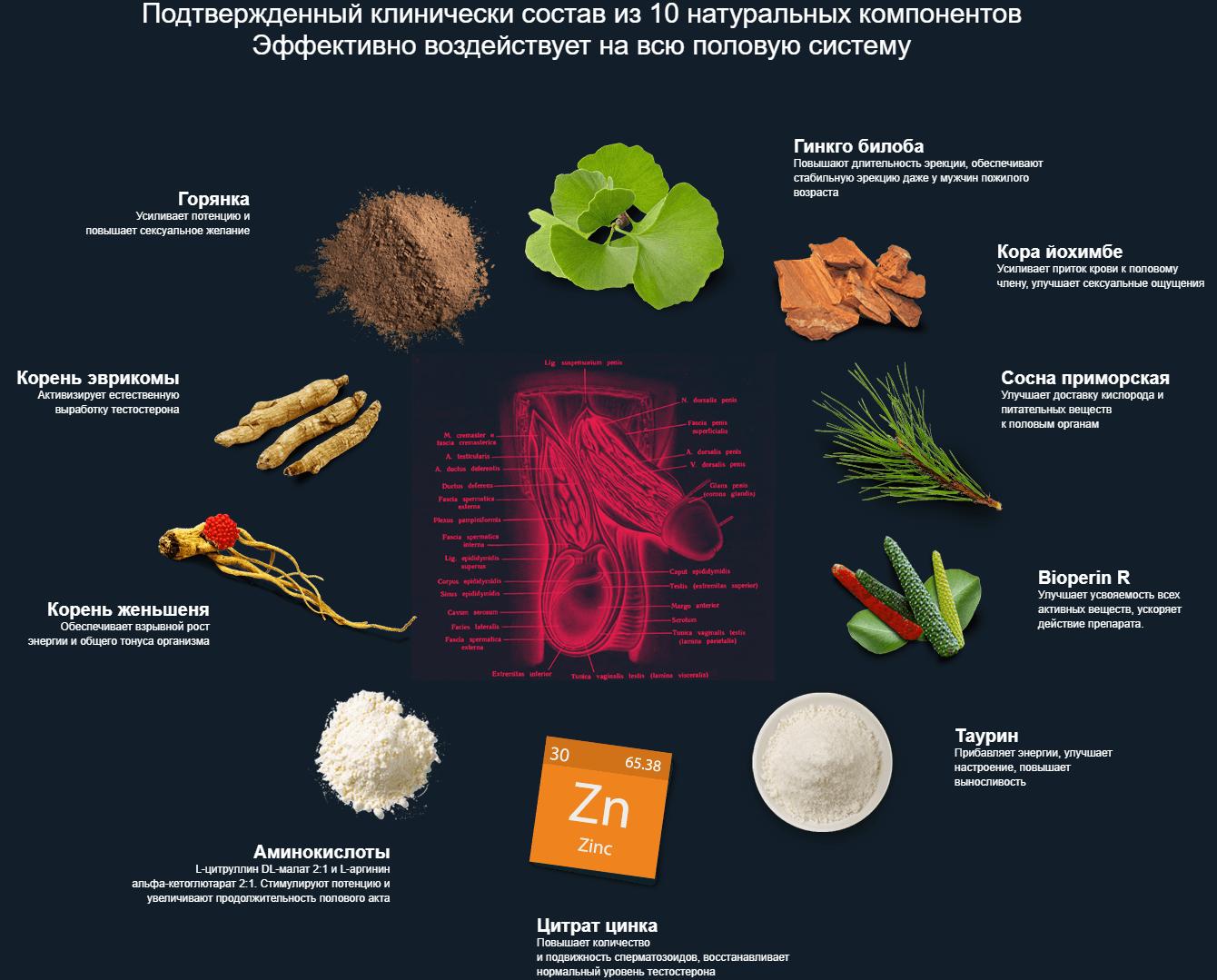 Биопотен – состав