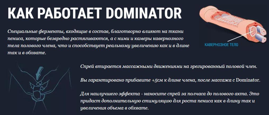 Доминатор – механизм действия