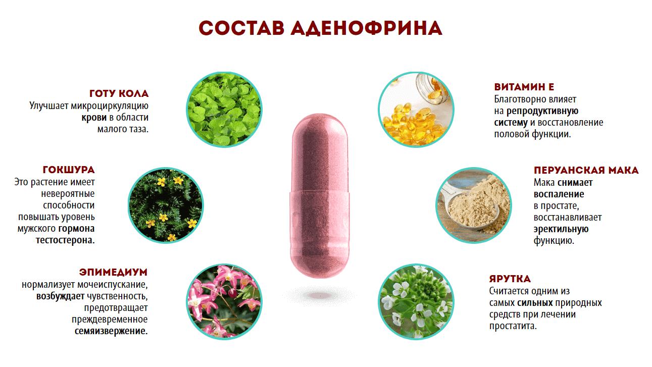 Аденофрин – состав